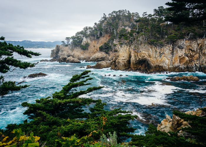 TAKE IN THE SITES OF THE MONTEREY BAY