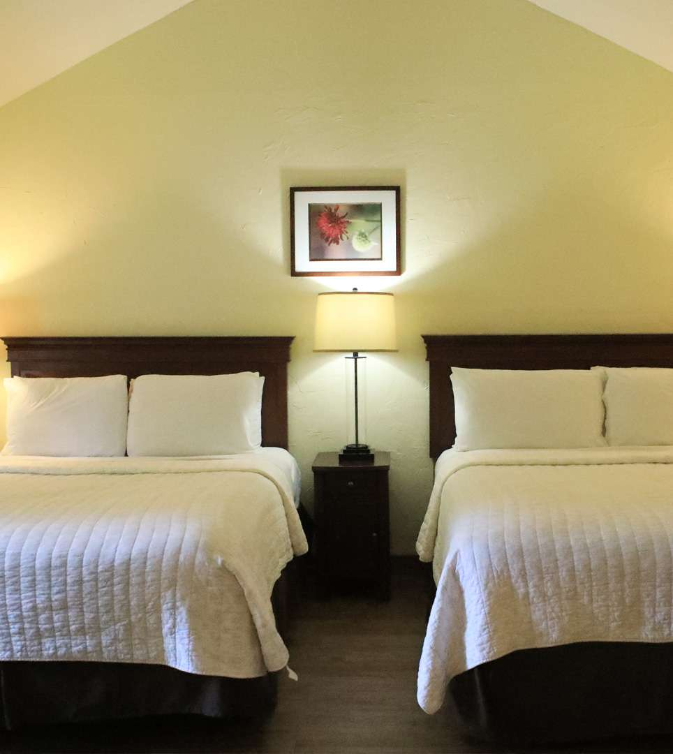COMFORTABLE ACCOMMODATIONS IN THE HEART OF CARMEL